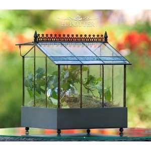 Table Top Wardian Display Case Patio, Lawn & Garden