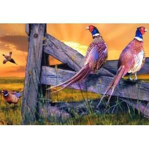 Pheasant Fence ~ Wooden Jigsaw Puzzle Toys & Games