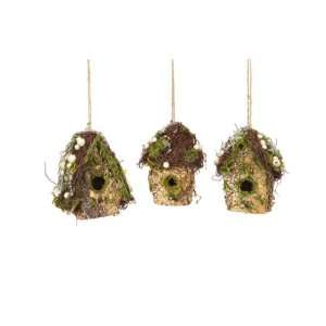 Club Pack of 12 Winter Solace Frosty Moss & Berry Birdhouse Christmas