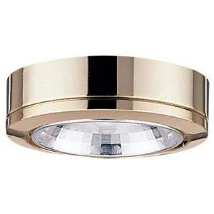 Sea Gull Ambiance Disk Lighting System Light Fixture