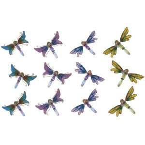Refrigerator Fridge Magnet Collection Dragonfly Set Of 12